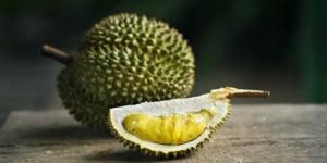 10 Manfaat Besar Durian bagi Tubuh