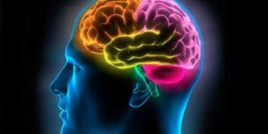 Gejala,Resiko & Pengobatan Kanker Otak