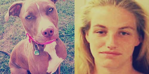 Perkosa Anjing Pitbull, Wanita ini Ditangkap Polisi
