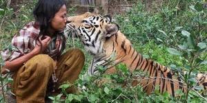 Abdullah Sholeh, Pria Asal Malang Indonesia yang Bersahabat dengan Macan