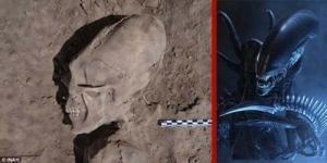 Sebuah Tengkorak Menyerupai Alien Ditemukan di Kuburan Meksiko