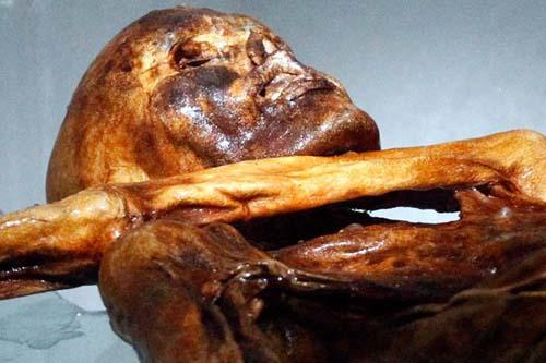 Foto Mumi Manusia Es Berusia 5300 Tahun