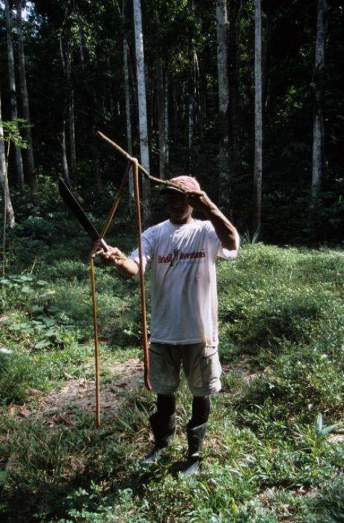 Temuan Cacing Raksasa Sepanjang 3,4 Meter