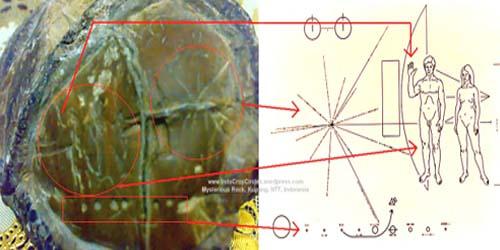Le voyage temporel est-il possible? - Page 34 9e12a-batu-artefak-ufo-kupang1