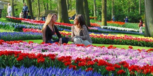 7 Tempat Indah di Dunia yang Wajib Dikunjungi: Taman Tulip Belanda