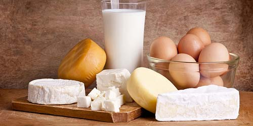 7 Makanan untuk Mencegah Kanker Payudara: Dairy Products