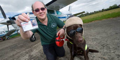 Kenalkan Callie, Anjing Pertama di Dunia yang Jadi Pilot