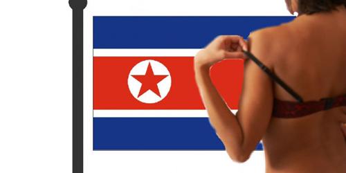 Ternyata Warga Korea Utara Hobi Unduh Konten Pornografi