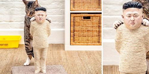 Mainan Kucing Berbentuk Kim Jong Un Dijual Rp 87 Juta