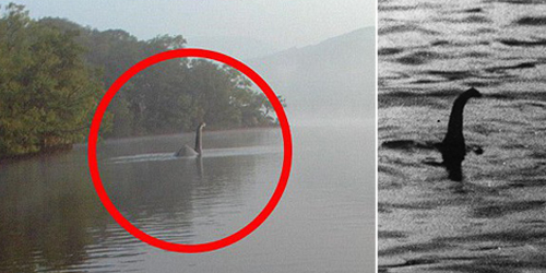 Penampakan Monster Loch Ness Diabadikan Fotografer Inggris