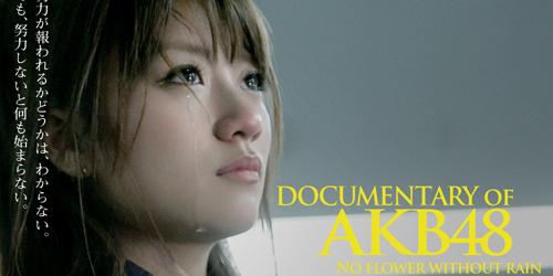 No Flower Without Rain, Film Dokumenter AKB48