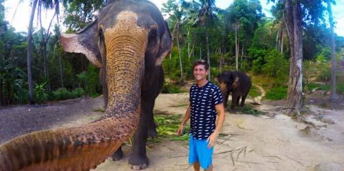 Ambil GoPro, Gajah Thailand Selfie Dengan Pengunjung