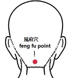 titik feng fu atau fen fu