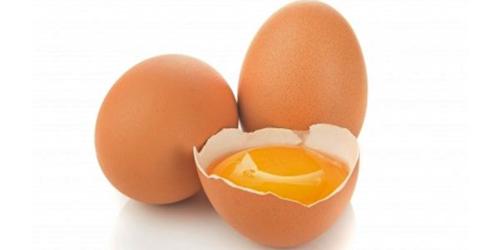 Khasiat dan Manfaat Kandungan Telur Ayam Kampung, Dahsyat !!!