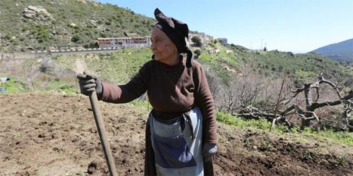 Rahasia Panjang Umur 100 Tahun Ala Orang Italia