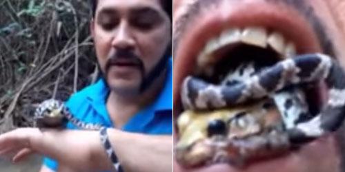 Video Pria Nekat Masukkan Katak Beracun dan Ular Berbisa ke Mulut