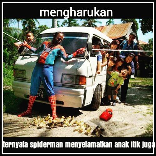 Spiderman juga menyelamatkan anak itik