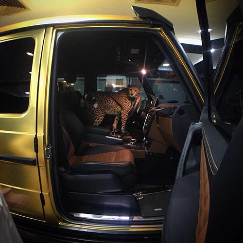 mobil-emas