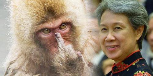 Posting Foto Monyet 'Jari Tengah', Istri PM Singapura Minta Maaf