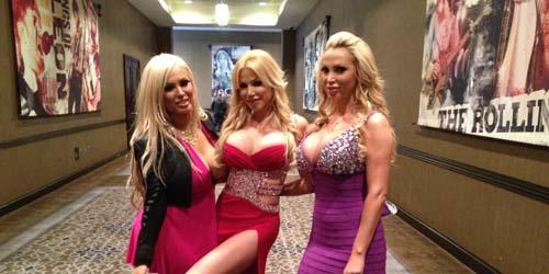 AVN Awards 2013, Penghargaan Khusus untuk Film Porno Terbaik