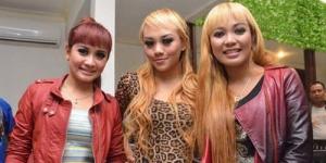 Trio Macan Bajak Lagu 'Iwak Peyek' dari Arek Band ?