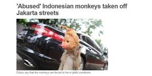 Media Internasional BBC Sorot Razia Topeng Monyet di Jakarta