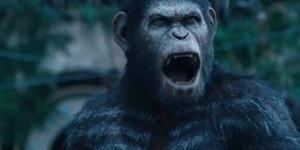 Trailer Dawn of The Planet of The Apes, Kera Bisa Berbicara