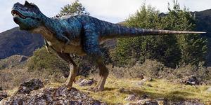 Fosil Kotoran Dinosaurus Terpanjang di Dunia Dilelang Rp 115 Juta
