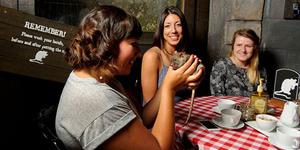 Kafe dengan Sensasi Makan dan Minum Bersama Tikus