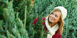 Cek Kepribadian Anda Berdasarkan Gambar Pohon