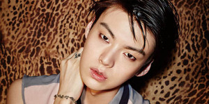 Aktor Tampan Korea Ahn Jae Hyun Disuruh Operasi Plastik