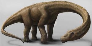 Dreadnoughtus Schrani , Dinosaurus Seukuran Pesawat Boeing 737-900!