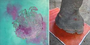 Wow! Lukisan Karya Gajah India Dibanderol Rp 4 Juta