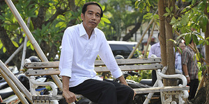 Presiden Jokowi Boyong Koleksi Kodoknya Ke Istana Negara
