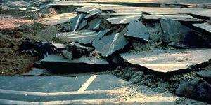 Gempa 7,3 SR Guncang Maluku, Berpotensi Tsunami Hingga Jepang