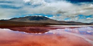 Laguna Colorada, Danau Merah dan Pasir Putih Habitat Burung Flamingo