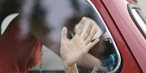 2 Oknum PNS Majene Pelaku Video Seks di Mobil Dipecat