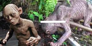 Video Makhluk Aneh Mirip Gollum di Perkebunan Sawit Borneo