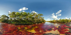 Cano Cristales, Sungai Pelangi di Kolombia