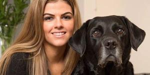 Kisah Anjing Berjasa Selamatkan Majikan Hampir Tewas