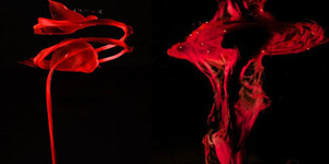 Fotografer Nyentrik Bikin Darah Menstruasi Jadi Karya Artistik