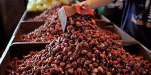 Harga Gula, Cabai dan Bawang Merah Naik Bulan Juni