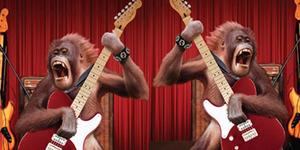 Kafe Malaysia Sulap Orangutan Jadi Rocker Menuai Kecaman