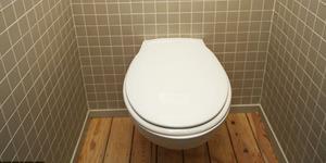 Kesal, Suami di Jepang Buang Abu Istrinya di Toilet Mal