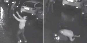 Video Pria Tangguh Tangkap Cewek Lompat dari Lantai 11
