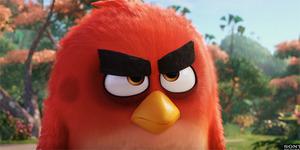 Aksi Kocak Red Si Burung Pemarah di Trailer The Angry Birds Movie
