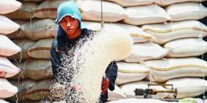 Harga Beras di Bali Mahal, Menteri Puan Anjurkan Diet