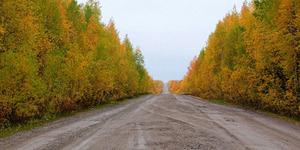 Pejabat Rusia Pereteli Jalan 50 Km, Kerugian Rp 1 Miliar