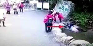 Turis Apes, Ingin Selfie Malah Tercebur Sumur 9 Meter