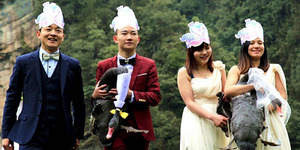 Ada-ada Saja, Warga Tiongkok Nikahkan Sepasang Angsa